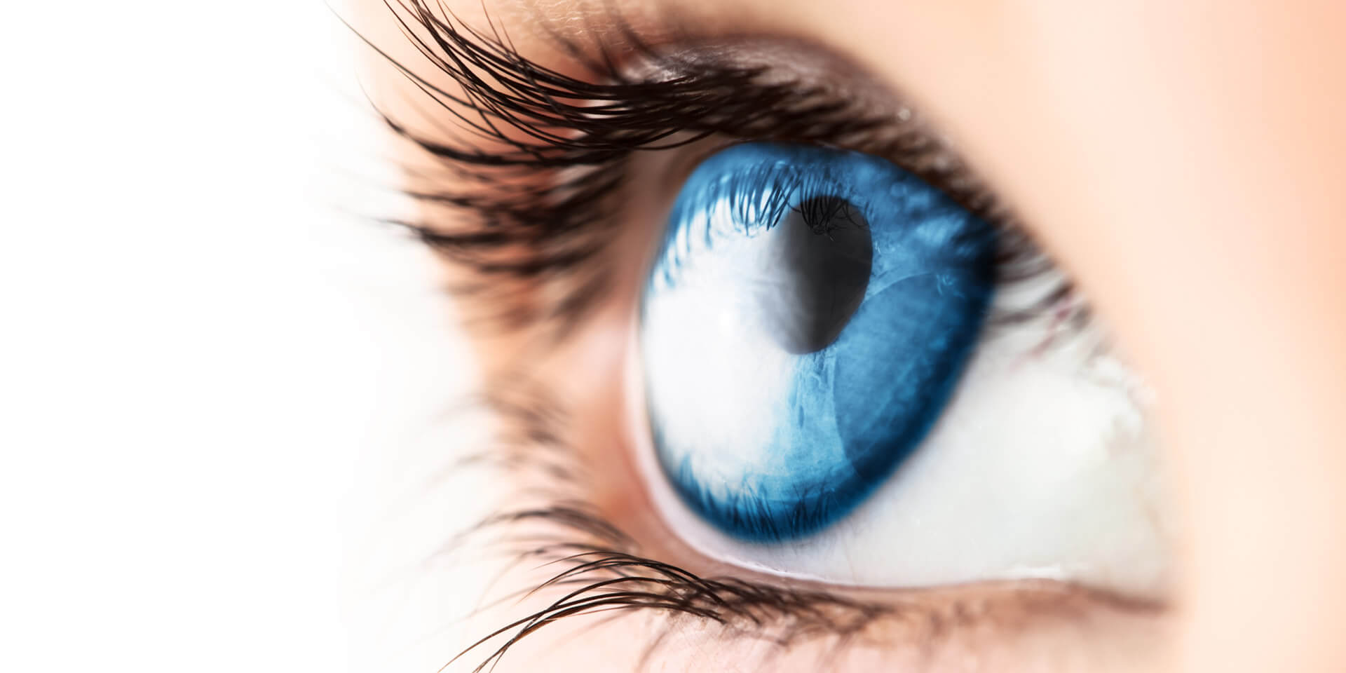 Das Bild zeigt ein menschliches Auge
